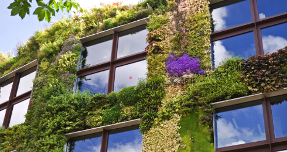Advantages and disadvantages of green architecture